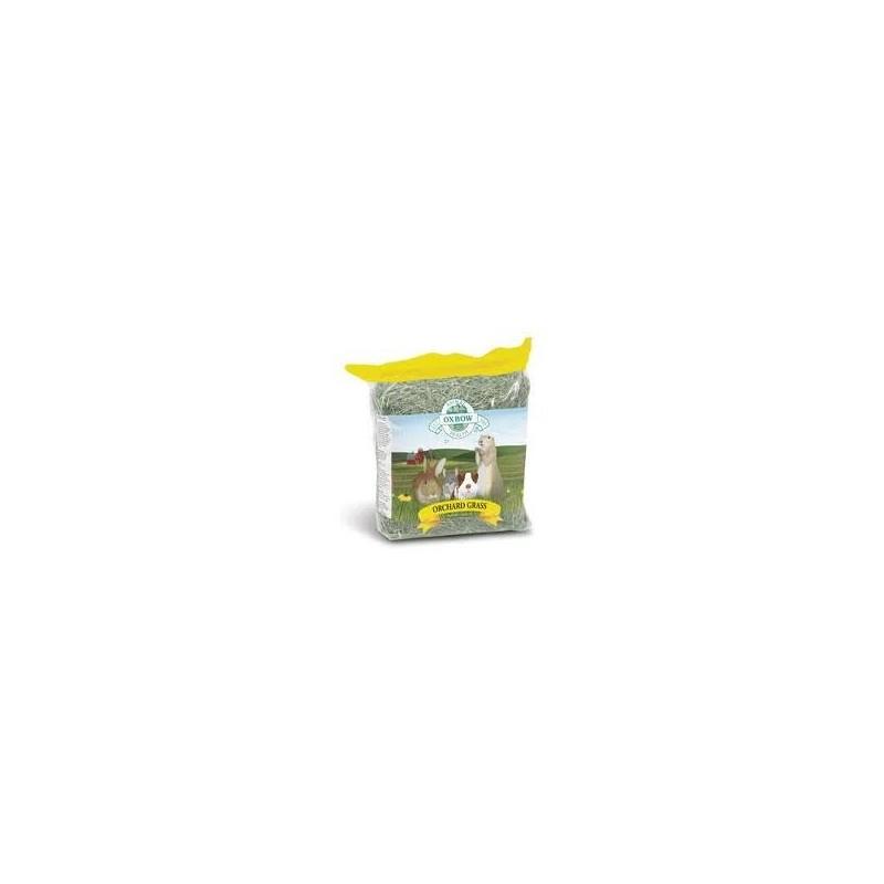 Oxbow Orchard Grass 22kg bulk buy