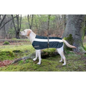Flecta Hi-vis Dog Jacket Blue