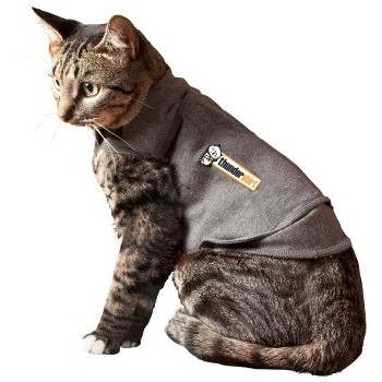 Thundershirt for Cats - help behavioural issues, trips to vet, stress, anxiety