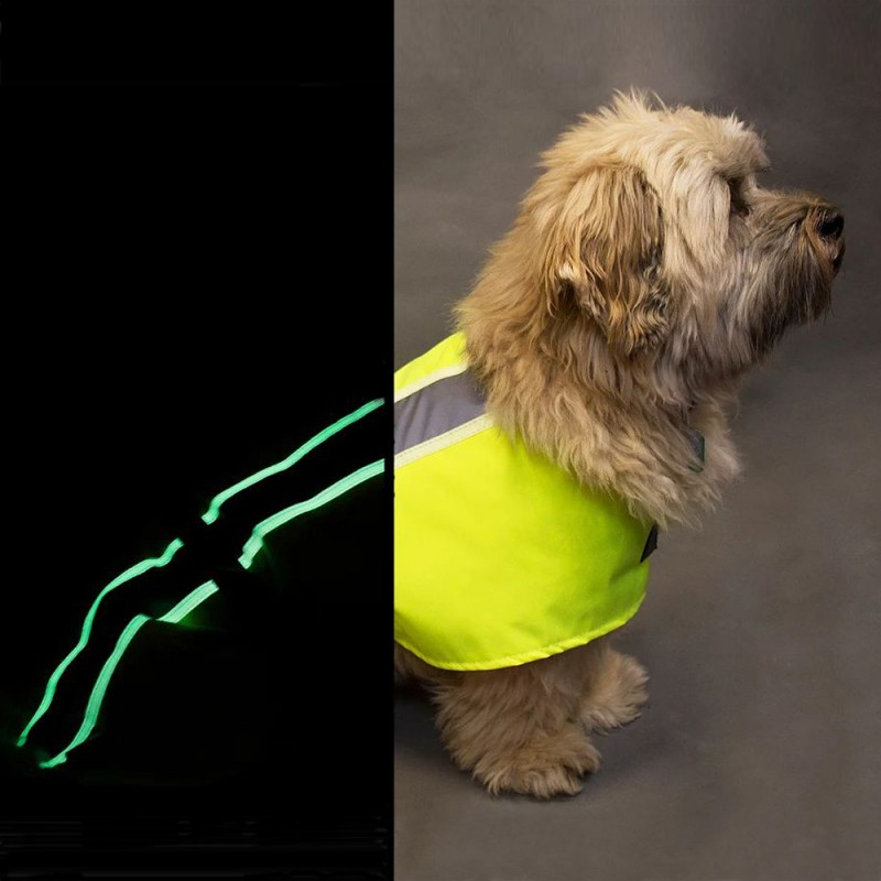 Vizlite dog coat for both day and night - make sure your dog is seen