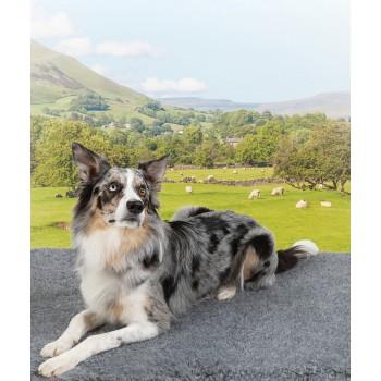 Vetbed Non-slip Fleece, British Wool Blend