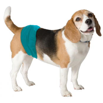 Simple Solution Washable Male Dog Wrap
